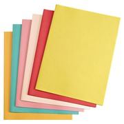 Subsleeve 60 g Exacompta 22 x 31 cm assorted colours - Pack of 250