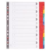 Gefärbte A4+ Register aus starkem Karton Exacompta - 12 Unterteilungen