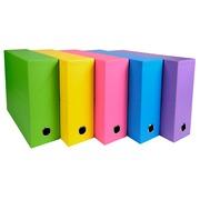 Transferbox, Rücken 90mm, 25x33cm für DIN A4+ - Salsa.