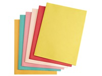 Recycled sleeves 170 g Exacompta 24 x 32 cm colored - pack of 100