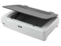 Epson Expression 12000XL - flatbed scanner (B11B240401)